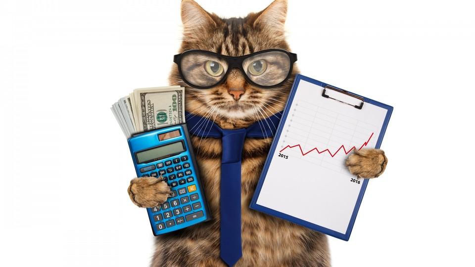 """КРИТЕРИИ ПРАВИЛЬНОГО БИЗНЕСА!1 -Затраты небольшие а Доходность должна увеличиваться!2 -Повторные продажи, многоразовые или регулярные доходы!3 -Доступность Клиента - Партнера.4 -Низкая стоимость привлечения Клиентов - Партнеров.5 -Низкие затраты на СТАРТЕ!6 -Востребованный Продукт или Услуга - растущий рынок!7 -Экологичность бизнеса, Честностные долгосрочные взаимоотношения (не хайпы).8 -Понятная система потребления, пользования и обучения.9 -Работа в Коллективе, взаимоддержка. Бизнес это прежде всего Люди!----------------------------------------------------------------------------------------------------ДРУЗЬЯ ВСТУПАЙТЕ В ГРУППУ PRO-ДВИЖЕНИЕ!ПРОЧТИТЕ """"ПОДРОБНЫЕ ДАННЫЕ ГРУППЫ""""За подробностями обращайтесь в ЛС.https://leopays.com/main-page-2/groups/viewgroup/1474-pro-dvizhenie"""