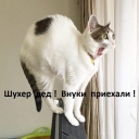 GalinaSk