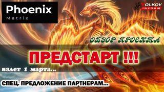 ПРЕДСТАРТ Phoenix Matrix (Феникс) - Что это за птица | Уникальное предложение для моих партнеров