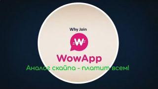 Wowapp - аналог скайпа платит деньги