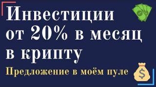 Инвестиции от 20% в месяц в стартап leopays и криптовалюту lpc. Предложение в моём пуле.