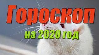 Гороскоп на 2020 год 💯 💯💯