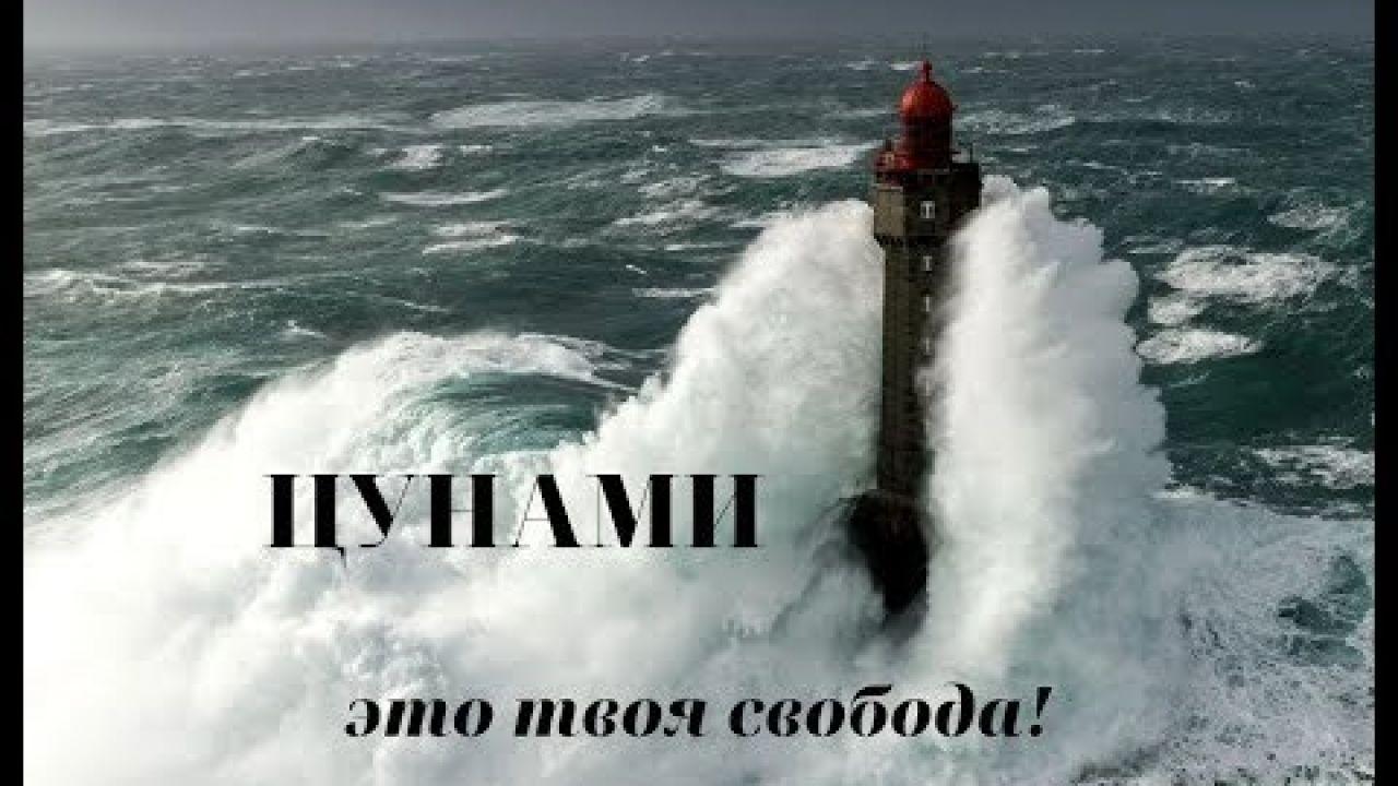 ЦУНАМИ МАНИ Регистрация #TsunamiMoney #tsunami#