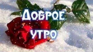 С добрым утром! Зимний приветик! Наслаждайтесь! Удачного дня! #доброеутро #открыткадоброеутро