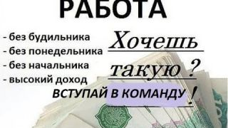Status 7 0   Бинарная матрица в Телеграм боте со входом 100 руб  и пассивным доходом .