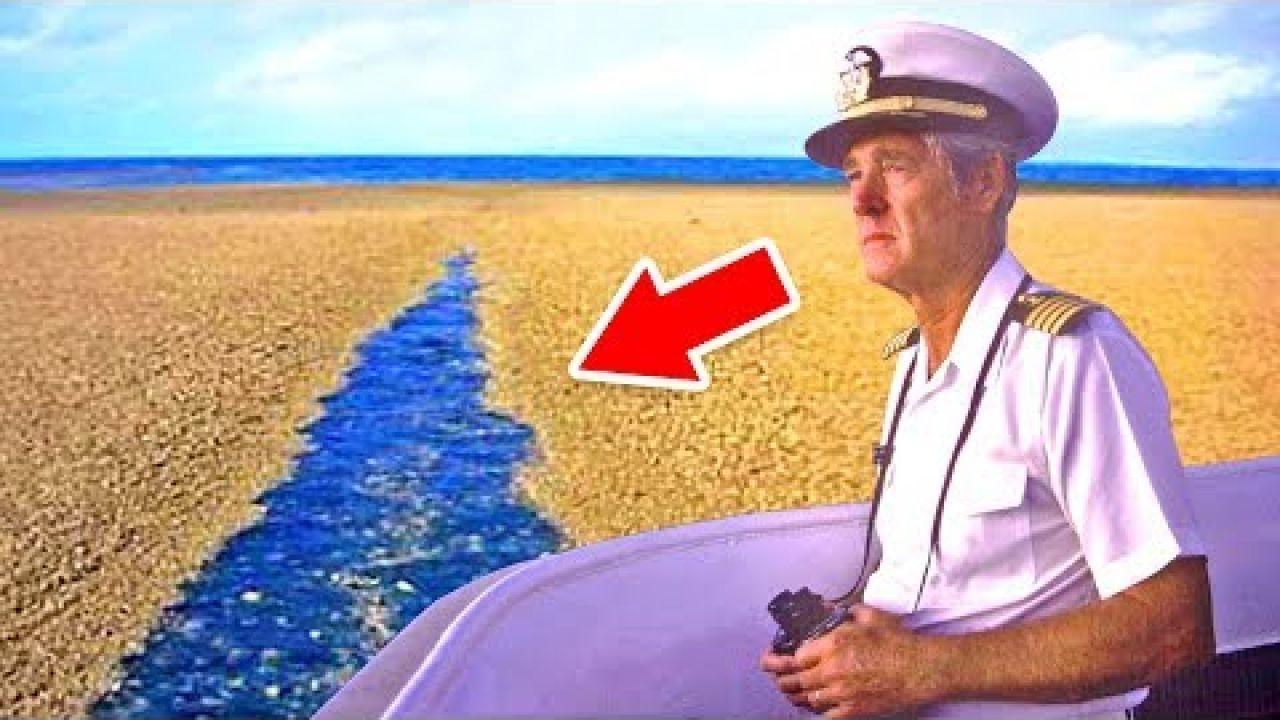 Когда Моряки Поняли Что Это, Было уже Слишком Опасно