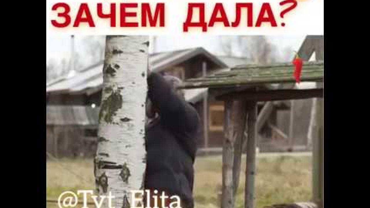 Где Пила Видео Анекдот